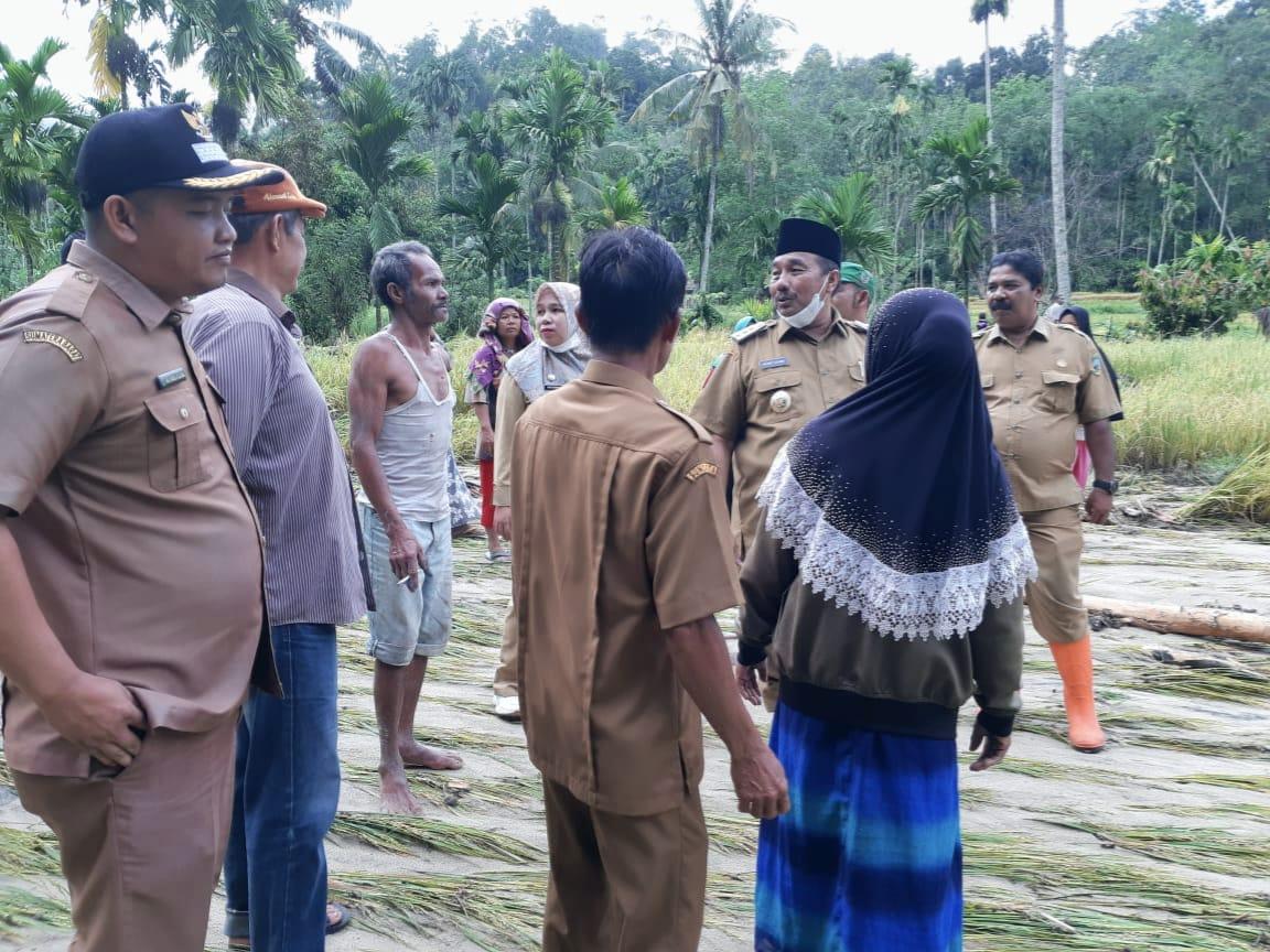 Cepat Tanggap, Benny Utama Tinjau Kondisi Banjir di Nagari Sundata